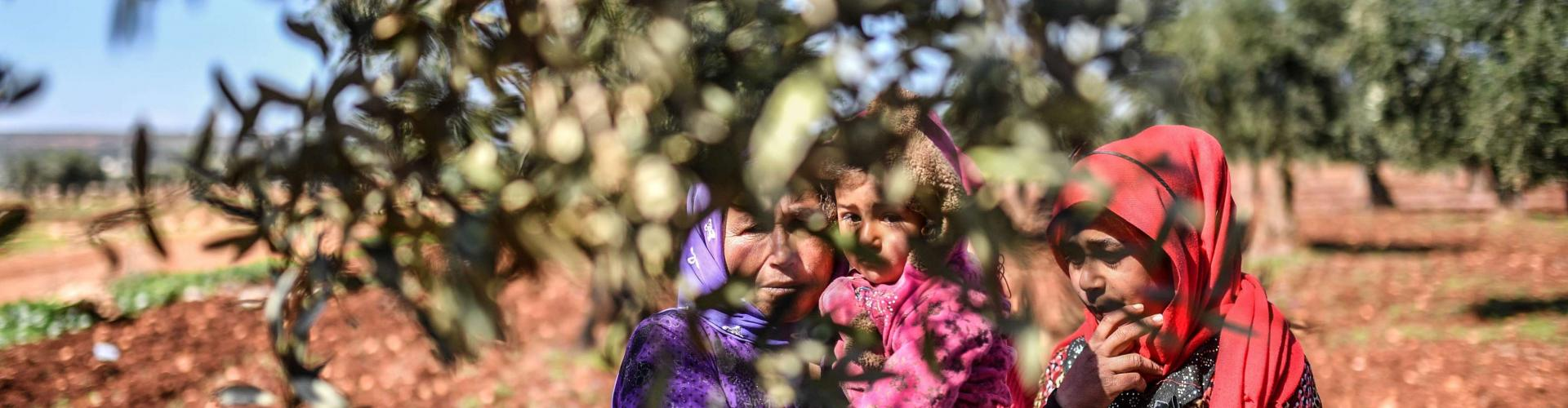 Syrian people look on behind an olive tree branch as they arrive at a check point in the village of Anab ahead of crossing to the Turkish-backed Syrian rebels side on March 17, 2018. Bulent Kilic/AFP